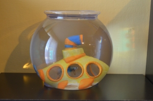"""Our new fish in preschool named """"Kindness""""."""