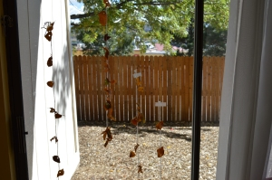 We made garlands out of fall leaves and hung them up on the glass door.